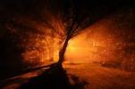 Thumbnail Night Time